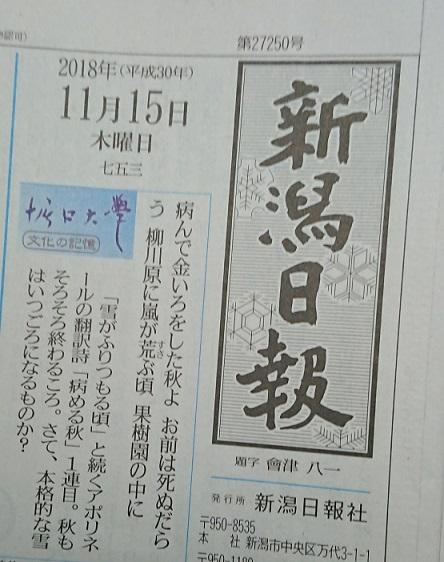 Niigata1115b